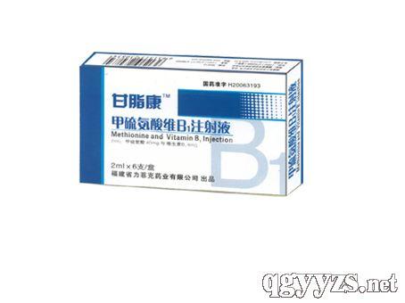 甘脂康甲硫氨酸维B1注射液