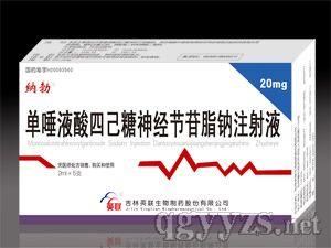 单唾液酸四已糖神经节苷脂钠注射液