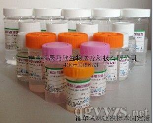 10中性福尔马林组织固定液