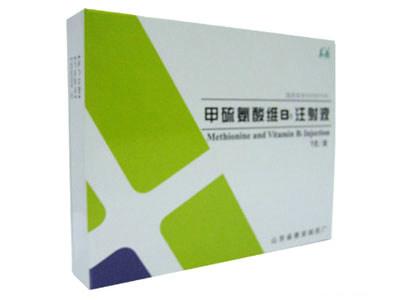 甲硫氨酸维B1注射液
