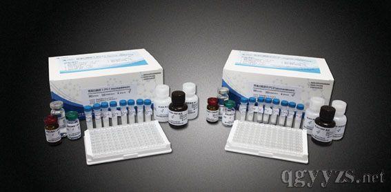 名称:IL-8 检测范围:15.6pg/ml1000pg/ml 灵敏度<2pg/ml 检测样品:血清,血浆,组织匀浆,细胞培养上清,尿液,肺泡灌洗液等 标准品:标准品2支 预包被抗体的96孔板:1板(812) 生物素标记抗体:96T1瓶 ABC(HRP标记亲和素物):96T1瓶 样品稀释液:15ml2瓶 标准品稀释液:10ml1瓶 抗体稀释液:10ml1瓶 ABC稀释液:10ml1瓶 TMB显色液A:6ml1瓶 TMB显色液B:6ml1瓶 TMB终止液:10ml1瓶 ELISA专用洗
